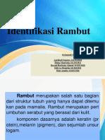 138550_Analisis_Rambut_Forensik_Kelompok_6[1]