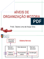 NIVEIS DE ORGANIZAÇÃO MOTORA