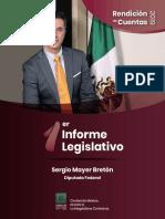 Diputado Sergio Mayer Bretón Primer Informe Legislativo 2019