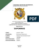 PN Informe N2
