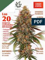 Revista THC 08.2019