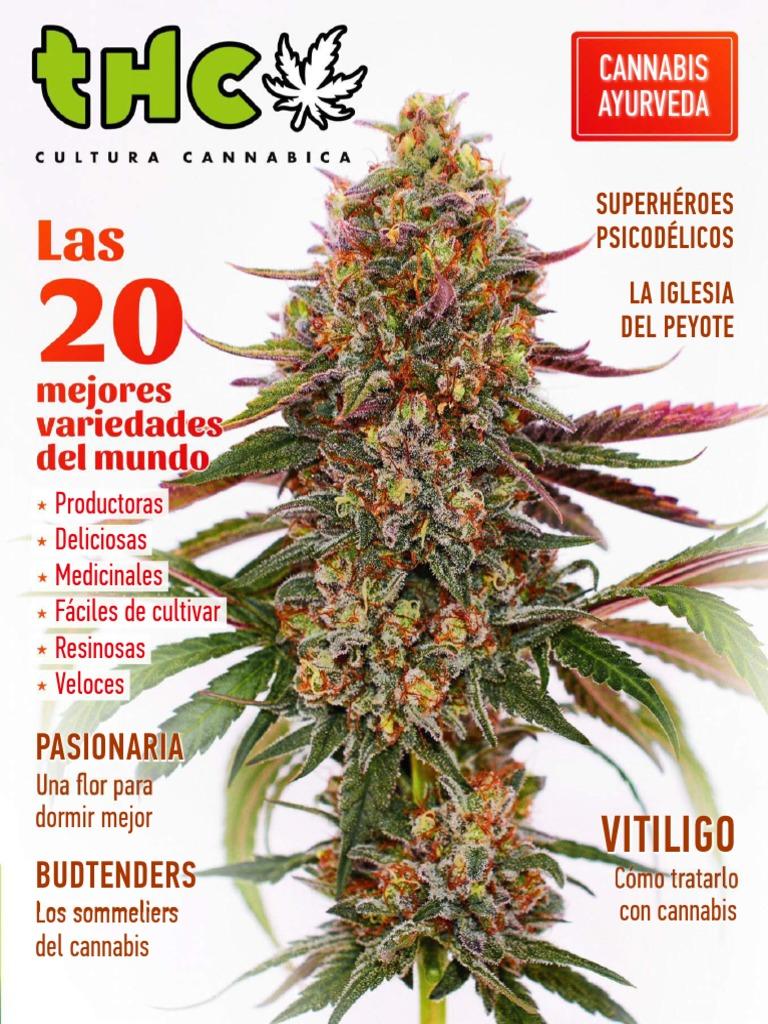 variedad de cannabis para la impotencia