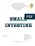 Trabajo Ingles Small Intestine