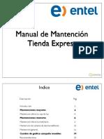 Manual de mantención Express V.2.1.pdf