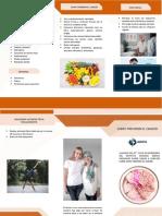 Triptico - Cancer PDF