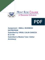 Small Business Enterprise