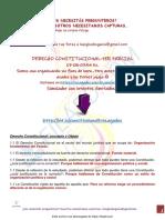 Derecho constitucional 1er parcial rezaga2