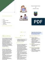 Triptico PIE 2.doc