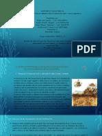 Debate sobre la biomasa microbiana. (1).pptx