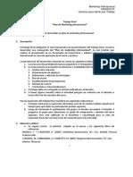 S1_Indicaciones - Trabajo de Investigación