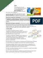 IMPACTOS AMBIENTALES 2