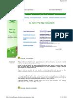 261763911-maracuya-pdf 2.pdf