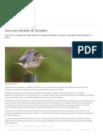 Las Aves Suicidas de Ecuador _