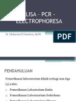 PK 1.2 ELISA, PCR, Elektoforese