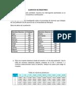 EJERCICIO DE MUESTREO DESARROLLAR.docx