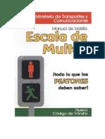 Manual Peaton