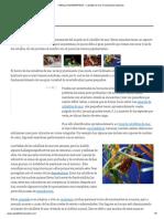 CABALLITODEMARPEDIA » Caballito de Mar. Enciclopedia Ilustrada