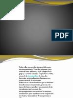 Presentación1 Empresa