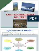 Ppt Ecorregiones 1 20145574 (1)
