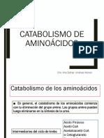 CATABOLISMO_AMINOACIDOS