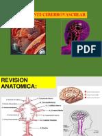 8 Accidente Cerebro Vascular Docente