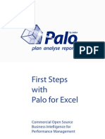 First Steps With Palo for Excel