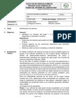 Informe 7 Completo