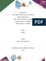 Trabajo Colaborativo Paso 4  Grupo 511004_3 (2).docx