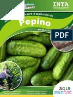 Recomendaciones-produccion-Pepino-2018.pdf
