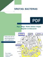 2 y 3. Bacterias.ppt