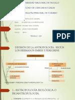 División de La Antropoplogía (Diaz Romero)