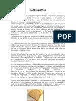Carbohidratos.doc Biologia