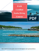 Diving Courses In Okinawa - Sunkissed Divers