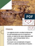 anatoma-de-corazn-1233692228155885-2 (1)-convertido