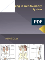 312020667-Imaging-in-Genitourinary-System-pptx.pptx