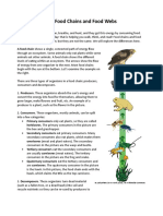 Food Chains and Food Webs DF.doc