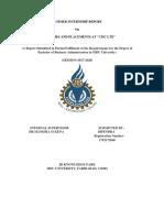 CMC Internship Report