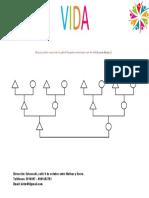Arbol Transg.pdf
