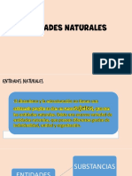 ENTIDADES NATURALES
