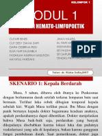 Modul 1 Sistem Hemato-limfopoetik
