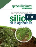 Manual Importancia Del Silicio 2019