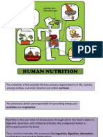 humannutrition-120828133709-phpapp01