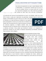 03. Sistemas hidroponicos y soluciones nutritivas para fresas.pdf