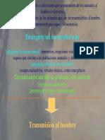 SaludPublicaZoonosisyNotificaciondeenfermedades.pdf