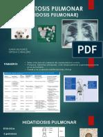 hidatidosis pulmonar