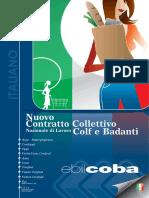 701Nuovo_CCNL_colf_badanti_Ebilcoba(1).pdf