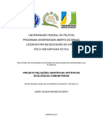 Relações Educacionais Artisiticas Ecológicas Comunitárias IAAD Estágio IV Daniel Moacir Moraes de Brito