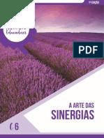 C6 - Sinergias (1).pdf