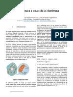 informe 2 Bioquímica.pdf
