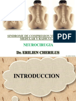 sindromedecompresionvertebralmedularyradicular-160929023638